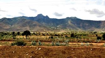 tanzania-fields
