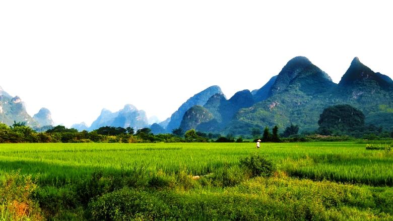 Yu Long rice man